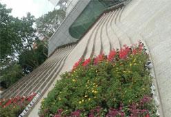 豹皮花广场地铺石